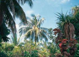 maledivy-hotel-holiday-island-019.jpg