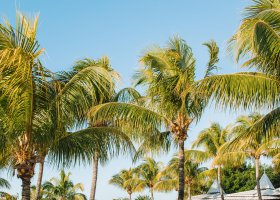 mauricius-hotel-paradise-cove-boutique-hotel-096.jpg