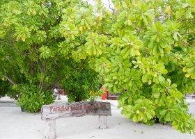 paradise-island-inspekce-2017-001.jpg
