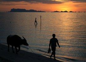thajsko-024.jpg
