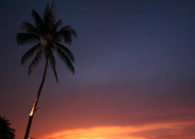 thajsko-hotel-mimosa-resort-spa-033.jpg